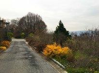 wavehill22